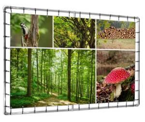 fotocollage op tuinposter natuur