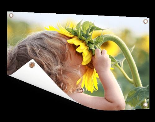 Zonnebloem op tuinposter afdrukken